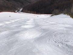 スキー 場 はら 高原 やぶ