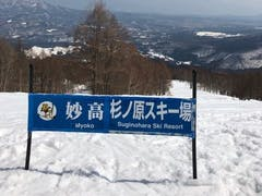 妙高杉ノ原