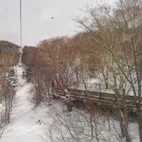 志賀高原 発哺ブナ平、東館山スキー場