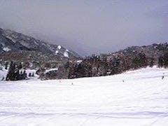 最高のゲレンデコンデイションで大満足! 年末年始、そして当日の降雪でゲレンデを歩くと、キュキュとゲレンデから雪が鳴く声が聞こえます。 今シーズン初滑りにしては、最高のスキー日和になりました。