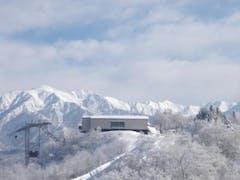 今年は何処も雪がたっぷり! ここ、立山山麓スキー場も正月から十分の雪にしかもパウパウ。。。 ひゃぁ~、楽しかったなぁ~。 心配した風も殆どなく晴れました。  ただ、極楽坂のクワットが良く止まり長蛇の列でした。 フード付クワット、楽しみにしてたのに、凄く残念でした。