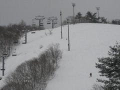雪質も良く滑りやすかったです。