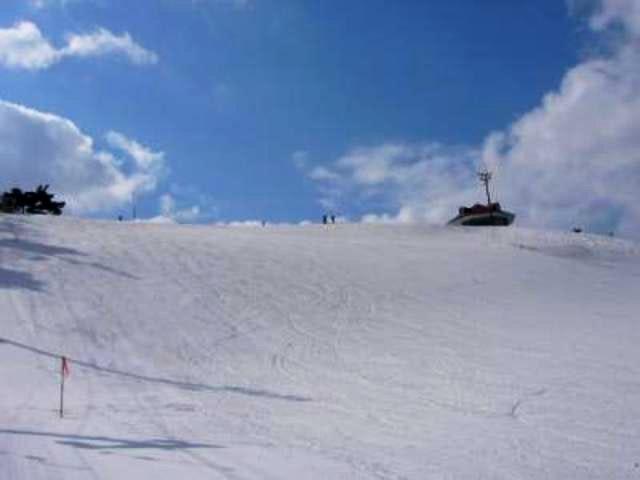 松山の写真