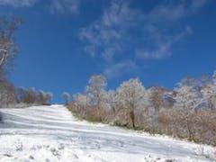 雪が降ったと聞き、下見に行ってきました。  写真はやまびこゲレンデのコブのできる斜面のとこです。  スキー・ボードの滑りはちょっとできませんでしたが、スタッドレスの滑りやドリフトはばっちり練習できました。