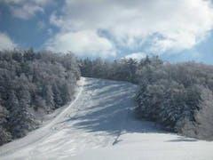 晴|曇。-17℃~-3℃。 スキー場までの路面は凍結。 スタッドレスでも、4駆でなければチェーン必携。 さすがの寒さで、山頂の樹氷も見事。 前回広いところに行ったせいか、どうにも狭く感じてしまう。 好天のためか意外に混雑していた。 センターハウスの「おすすめランチ」は和風チキングリル (鶏の半身)で、野菜もかなり多くおすすめ。
