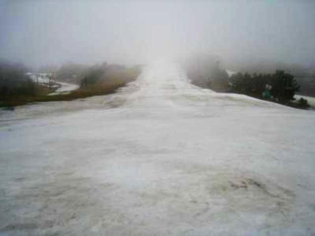 鹿沢スノーエリアの写真