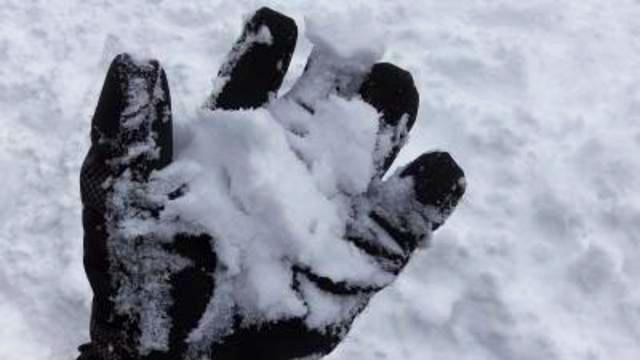 白樺高原国際の写真