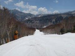 ウグイスの鳴き声が心地よいスキーでした!