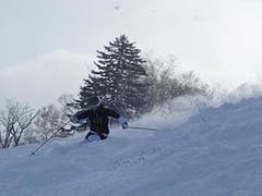 今シーズンのテイネは、近年まれに見る良いコンディション。 大雪のあと、一度雨が降って下地ができ、そのあとの順調な降雪でとても滑りやすい状態。 ハイランドゾーンの通常コースは、ほぼ全コース滑走可能。 基礎板で油断していたら写真の通りで、ファットが楽しめる状態。