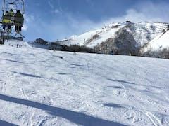 全面滑走可、上部は混んでいたため、主に白樺で滑走。