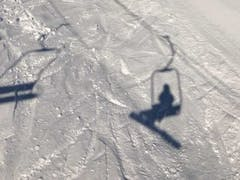 氷ノ山国際