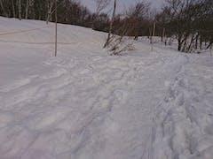 2020(R2).1月中旬 アルツ・猫魔雪上コース開設予定