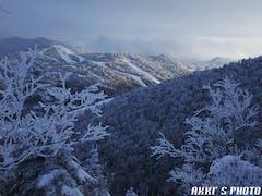 夜の大雪で20cmぐらいの新雪(*^▽^*)