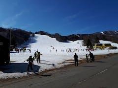 さいたま市のスキースクールで講師を務めました。