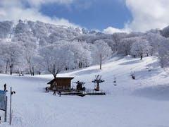野沢温泉、天気がよくてすっかり春スキー。のんびり楽しむ。
